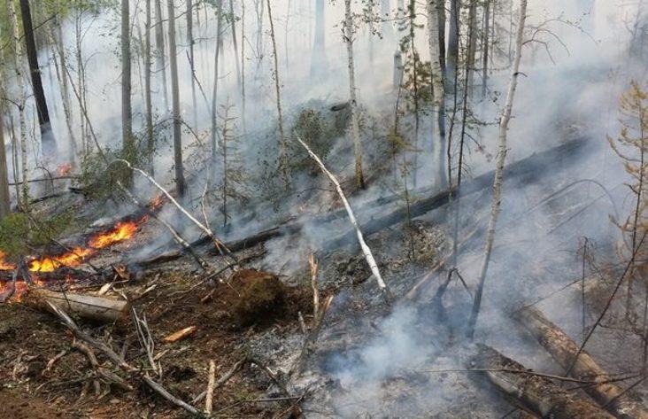 ВИркутской области засутки устранено восемь лесных пожаров